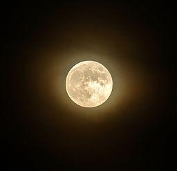 1351263887_8512_full-moon